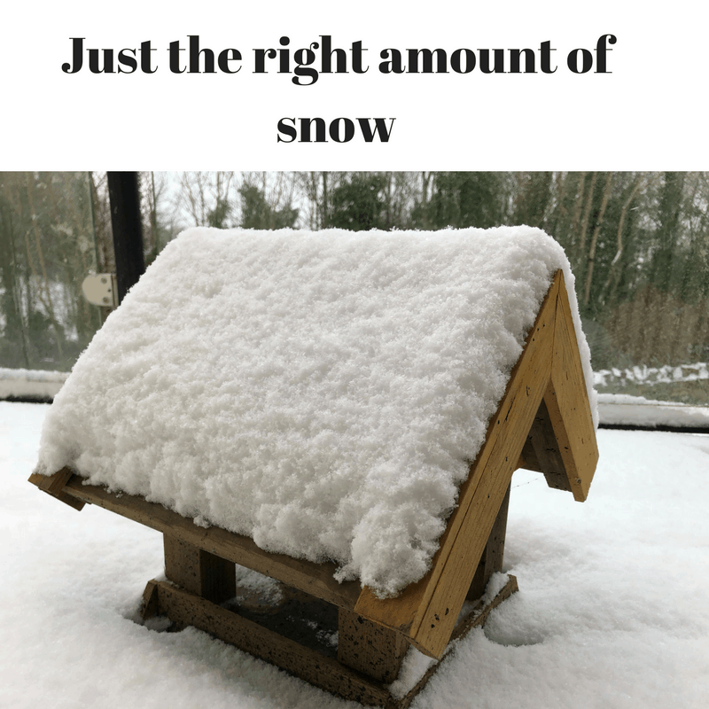 Just the right amount of snow